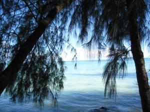 サイパンの海