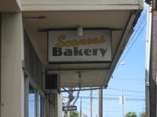 sconey's