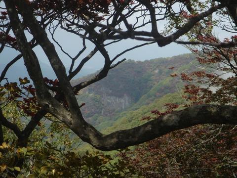 赤城山は登るのを楽しむのではなく、山を楽しむのだそうな。
