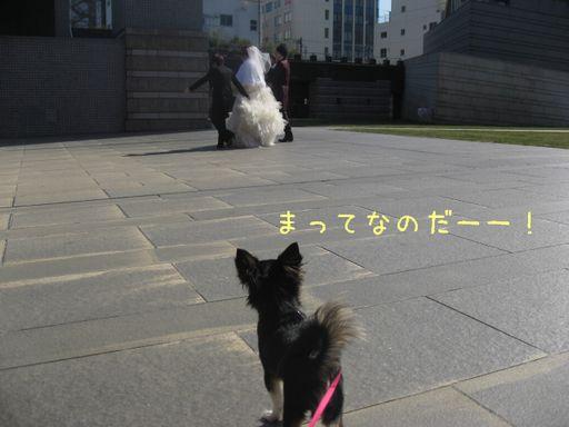 IMG_9404.jpg