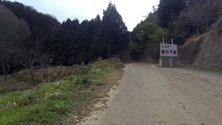 nagasawa03.jpg