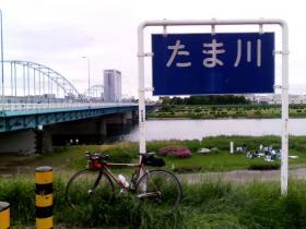 tamagawa_20081229195117.jpg
