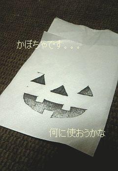 1001かぼちゃ消しはん.jpg