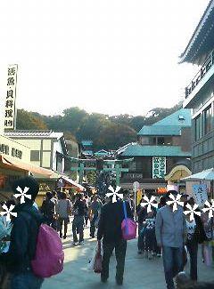 091014江ノ島4