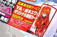 YA6_05.jpg