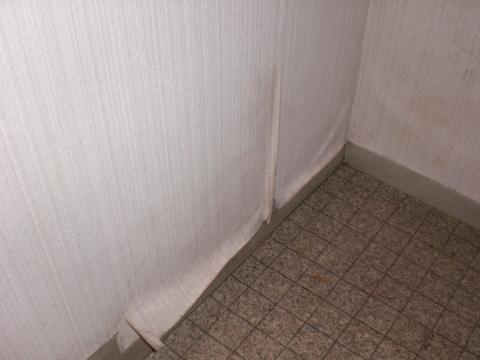 壁紙掃除2