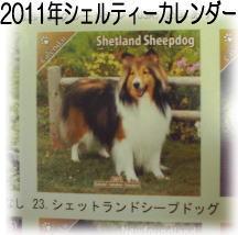2011年シェルティーカレンダー