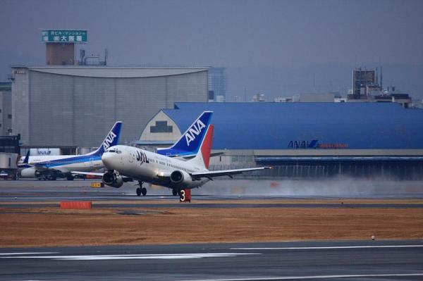 JEX B737-446 JC2251@RWY14Rエンド(by 40D with EF100-400)