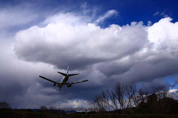 ANA B767-381 NH546@樹木見本園(by 40D with SIGMA 18-50)