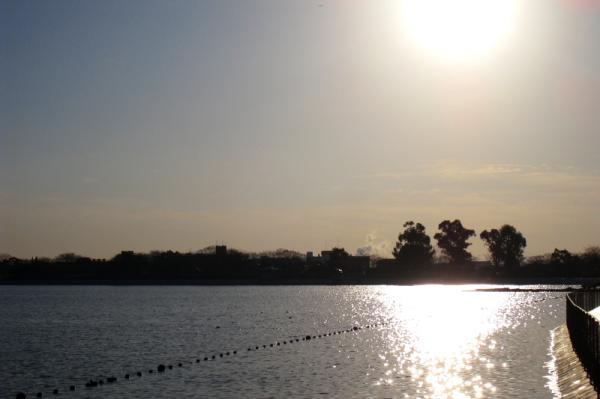 朝の瑞ヶ池公園2(by IXY DIGITAL 910IS)