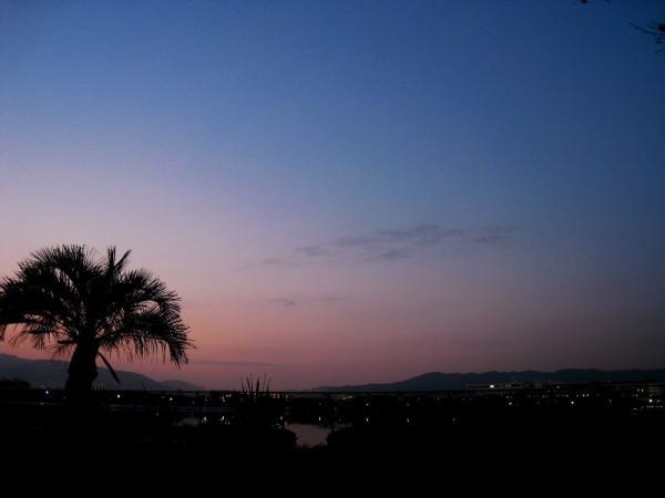 残照の残る夕空@瑞ヶ池公園南畔側(by IXY DIGITAL 910IS)
