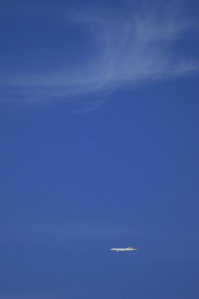 朝の空&JAL B777-346 JAL2001(by IXY DIGITAL 910IS)
