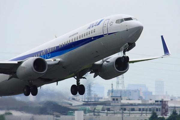 ANA B737-881 ANA963@下河原緑地展望台(by 40D with SIGMA300/2.8EX+APO TC2x)