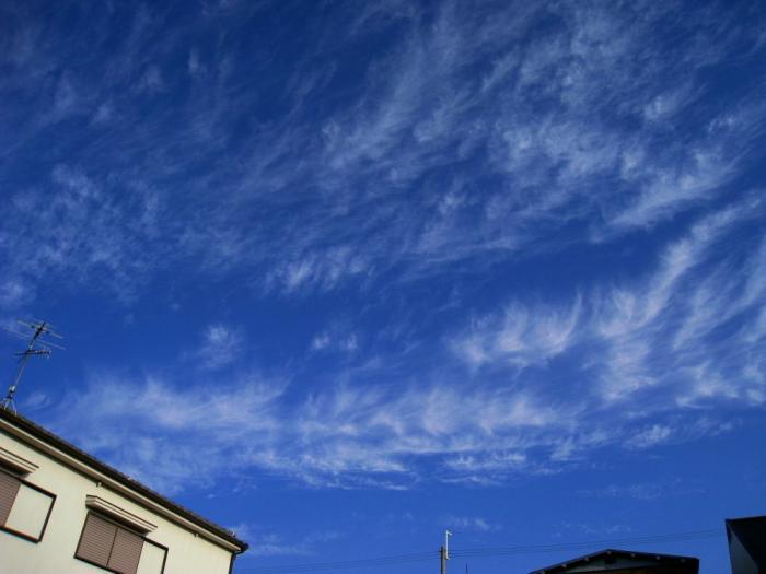 今朝の空@自宅前(by IXY DIGITAL 910IS)