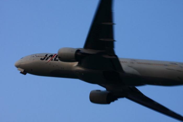 JAL B777-246 JAL130@RWY14Rエンド(by 40D with EF100-400/4.5-5.6L IS)