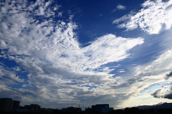 本日の夕空@伊丹リサイクルセンター周辺(by KDX with SIGMA18-50/2.8EX)