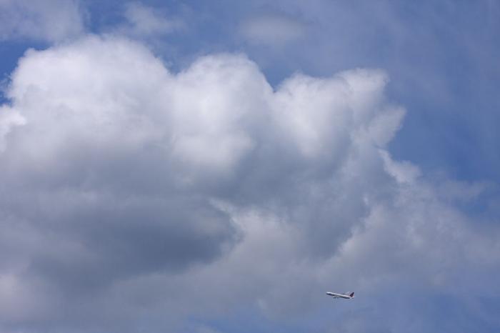 ビミョーに入道雲&JAL B767-346 JAL1605@@リサイクルセンター周辺(by 40D with EF100-400/4.5-5.6L IS)