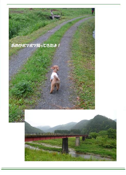miyama10.jpg