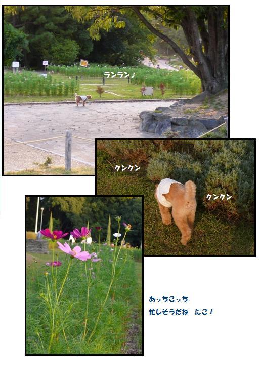 ryo2.jpg