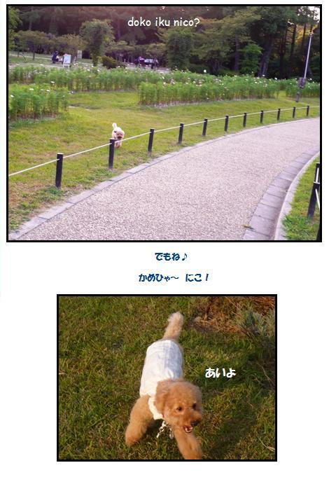 ryo3.jpg