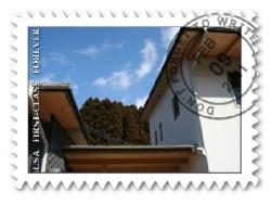 20110209-5.jpg