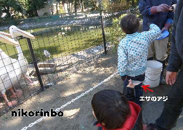 3歳 動物園3