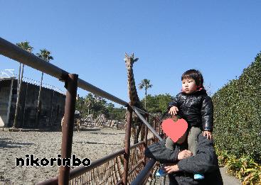 3歳 動物園1