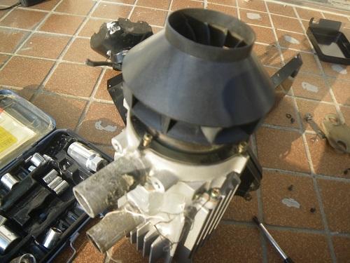 IMGP4860.jpg