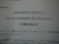 IMGP7269.jpg