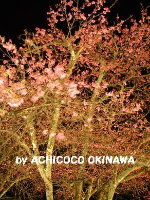 aanajijiji34.jpg