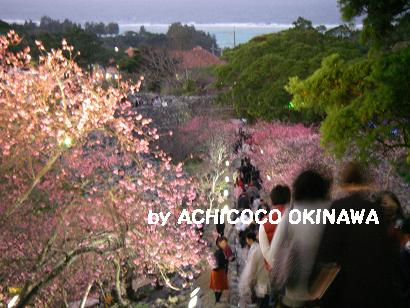 aanajijiji5.jpg