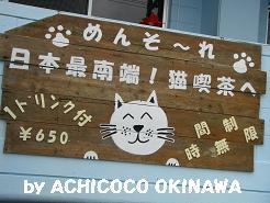 aanekocaca31.jpg