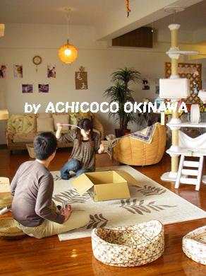 aanekocaca35.jpg