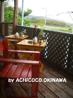 aanekocaca5.jpg