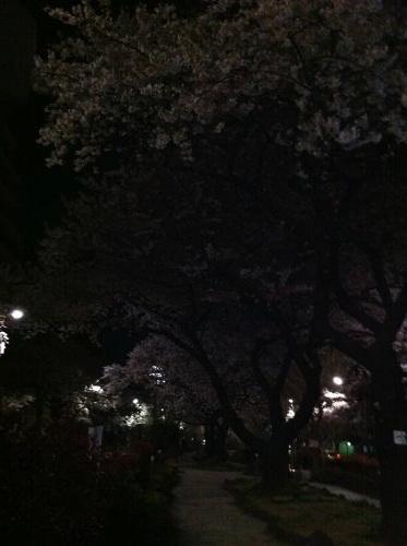 Photo+4月+14,+2+11+11+午前_convert_20110414022849