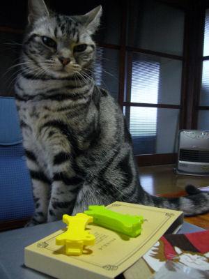 猫クリップ