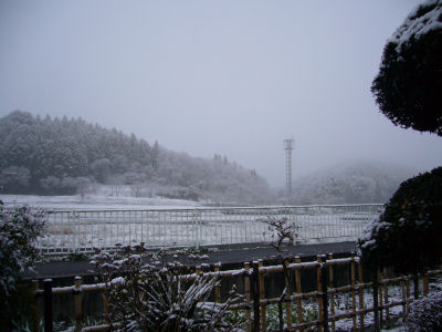 今度こそ最後の雪?2