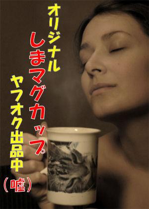 オリジナルしまマグカップ