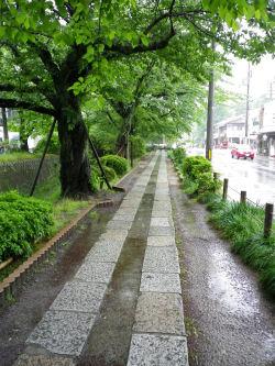 雨の哲学の道