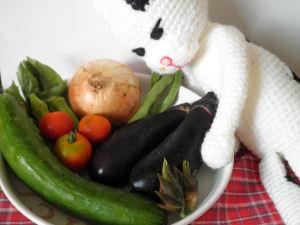 ミャオちゃんと野菜