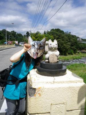 欄干の招き猫