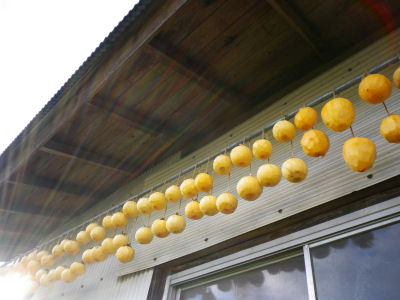 実家の干し柿