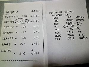 20101216血液検査結果