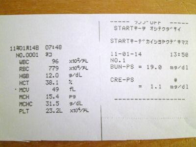 20110114血液検査結果