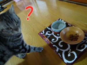 お味はいかが?1
