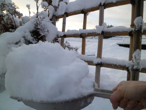 雪かきした。