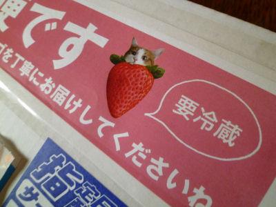 はなちゃん印の苺