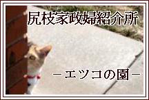 201102271210396c4.jpg