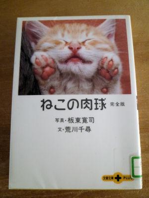 借りて来た本