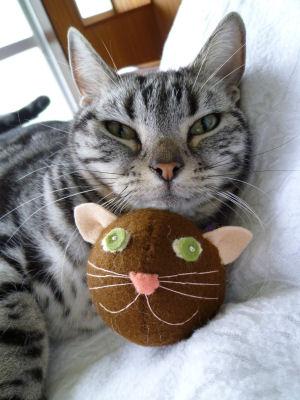 しまと猫アタマ2